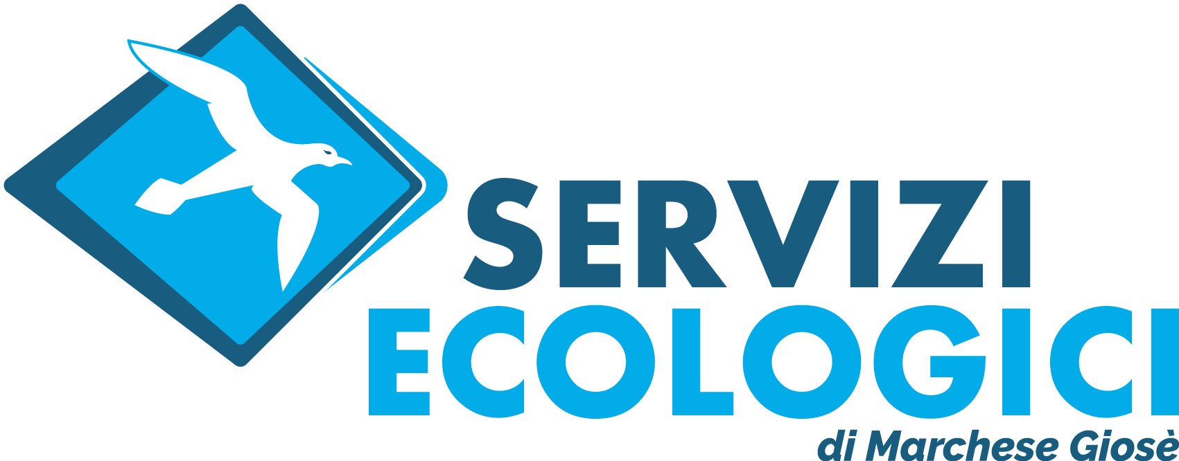 servecomarchese.it
