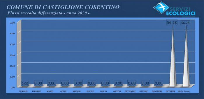 Castiglione Cosentino Flussi anno 2020
