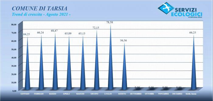 Tarsia trend agosto 2021